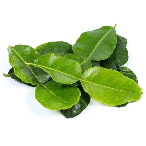 Limoenblad